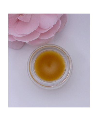 rosa-absolut-parfum-solid